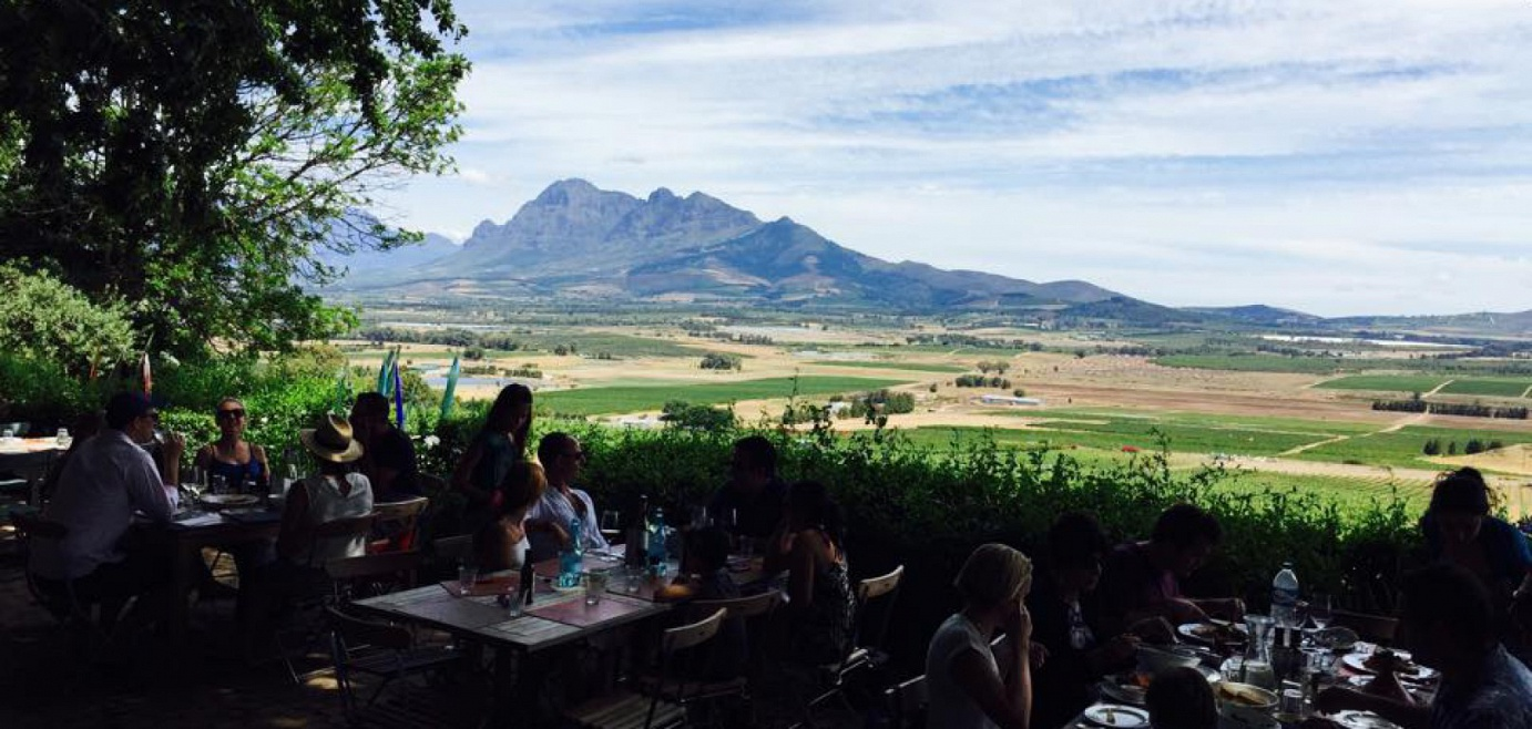 family-fun-and-furry-friends-in-the-winelands-venue